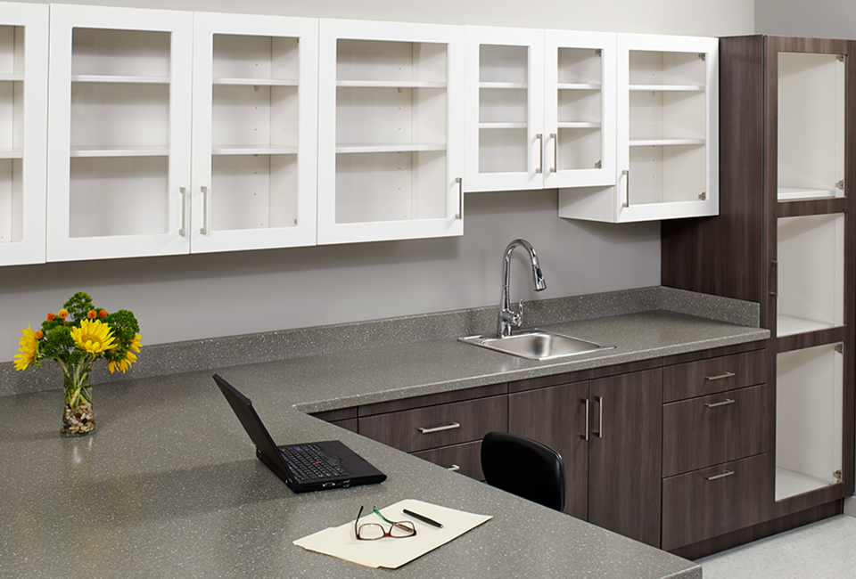 synthesis-casework-collection-thumbnail
