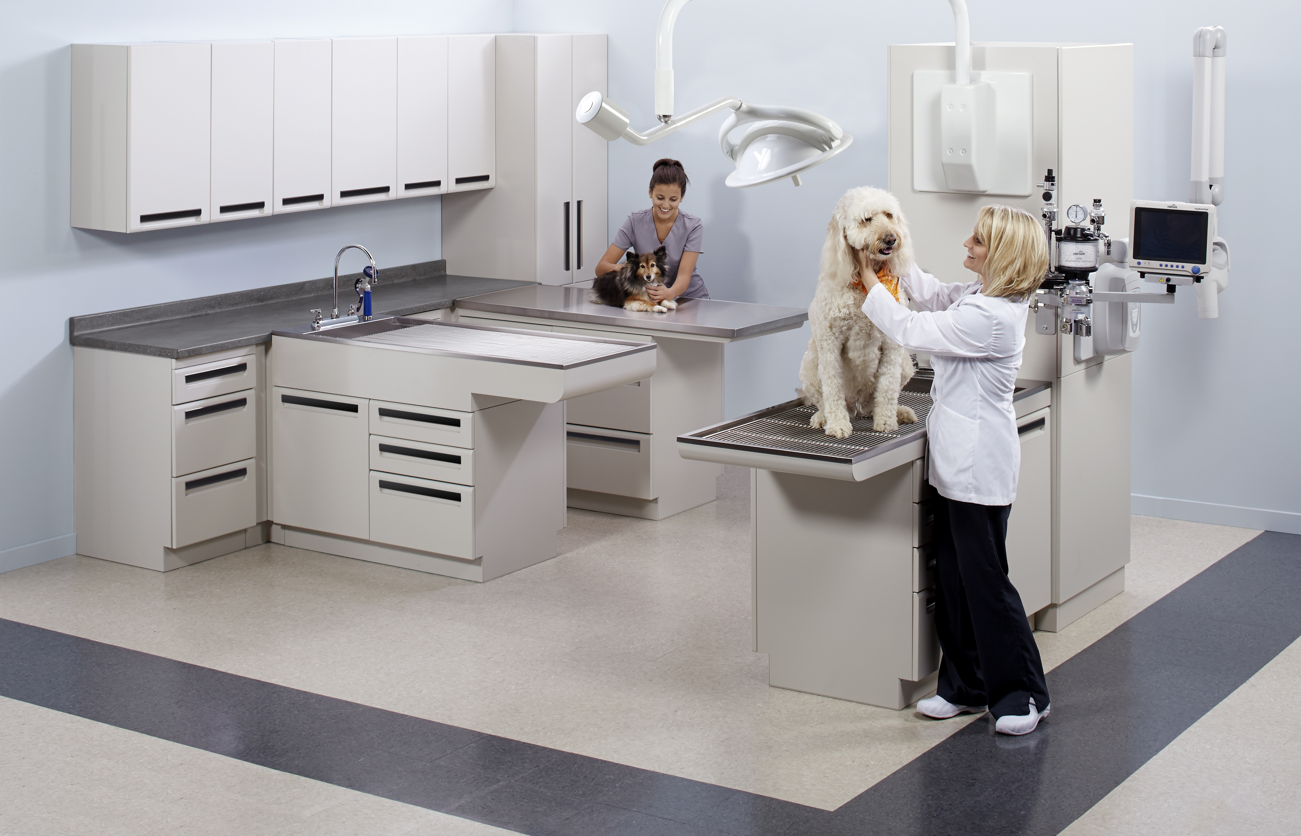 Treatment_Room_Solutions_2Dogs_Models