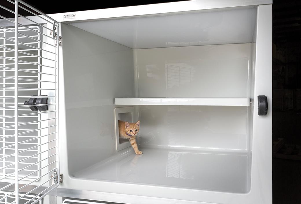 fiberglass-cat-suites-3