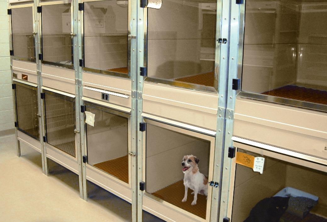 ISO-Care-Quarantine-Cages-1